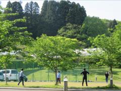 新緑のキャンパス5